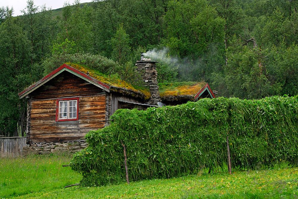 Fäbodar 03-01039