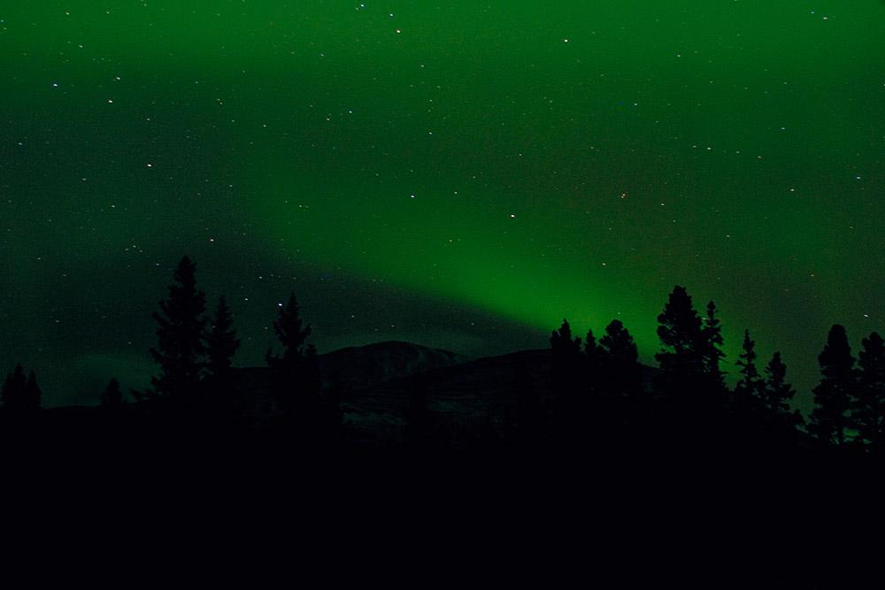 Norrsken 02-02103