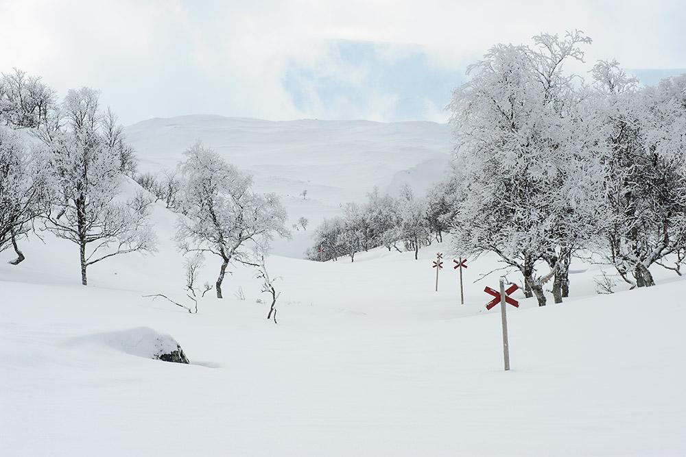 Vinter I Jämtlandsfjällen